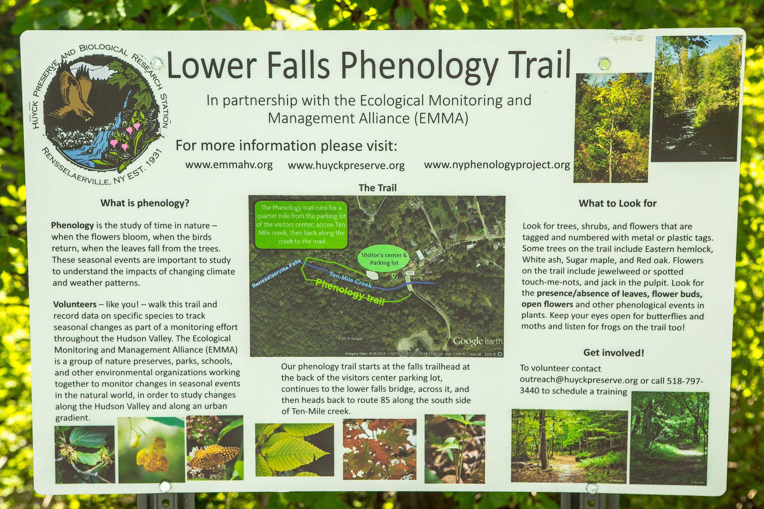 lower falls phenology trail hike.jpg