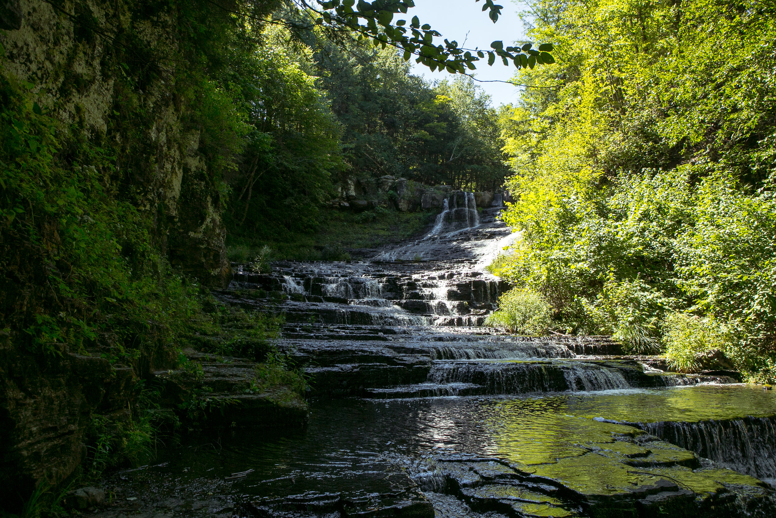 lower falls phenology trail hike-5.jpg
