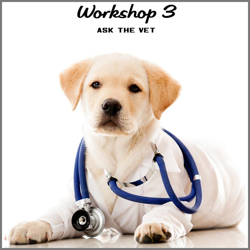 workshop 3 shortcut.jpg