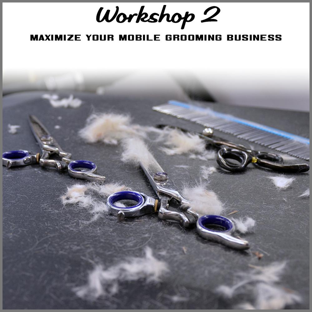 workshop 2 shortcut.jpg