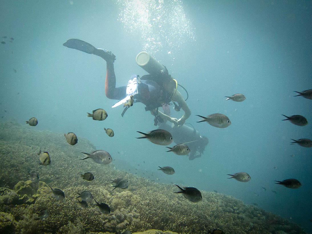 Bali_16.jpg