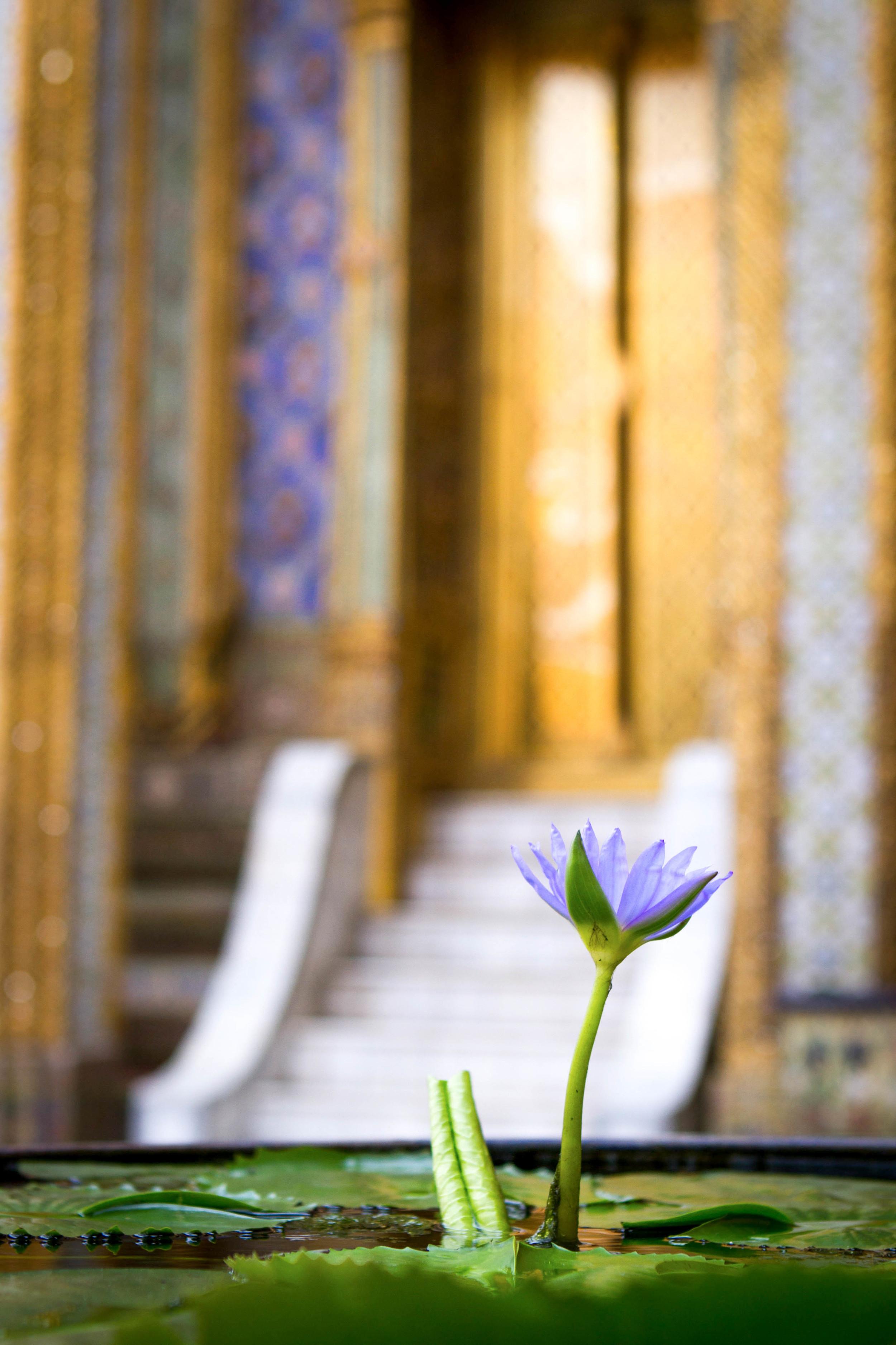 10_Bangkok.jpg