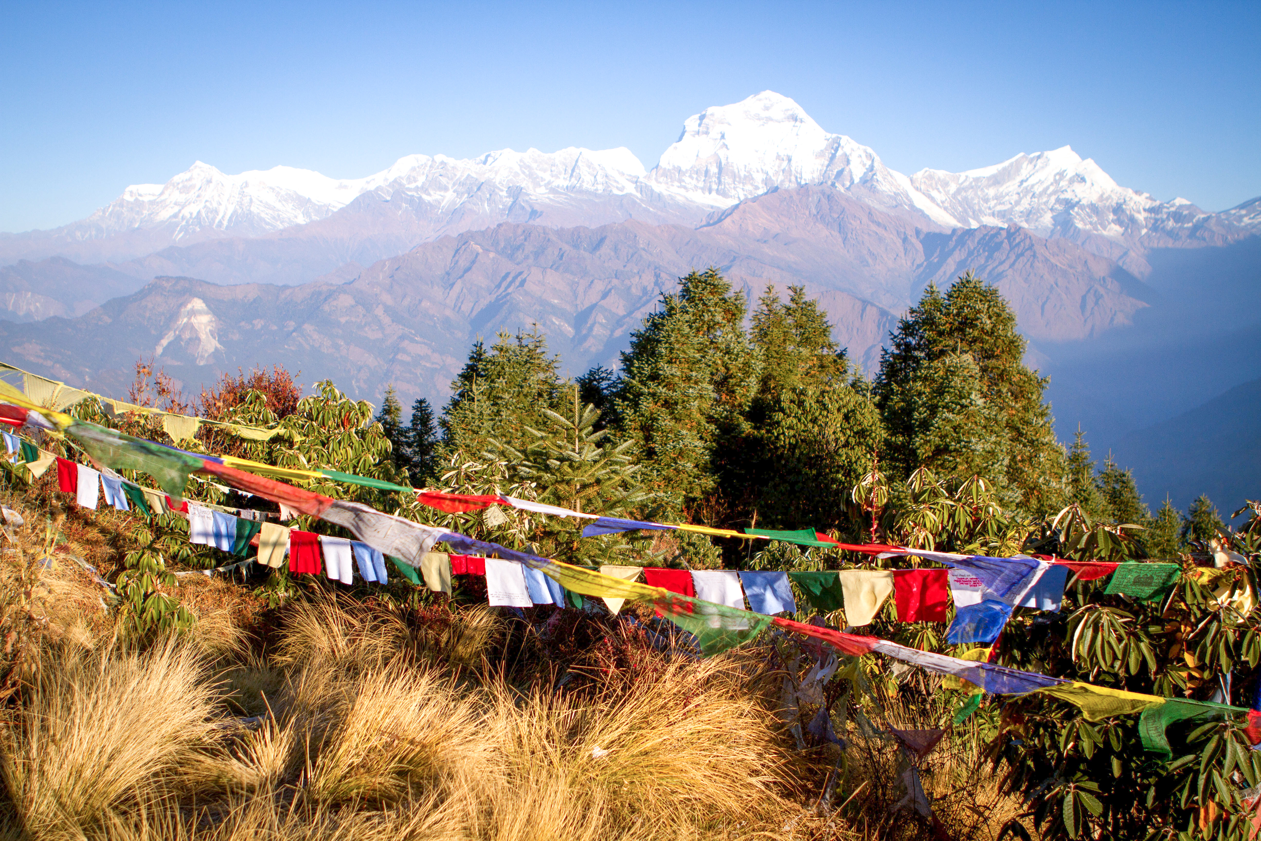29_Nepal.jpg