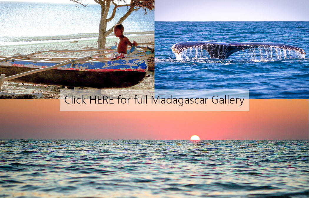Madagascar Cover Photo.jpg