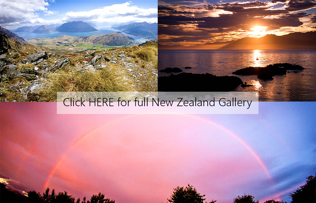 NZ Cover Photo.jpg