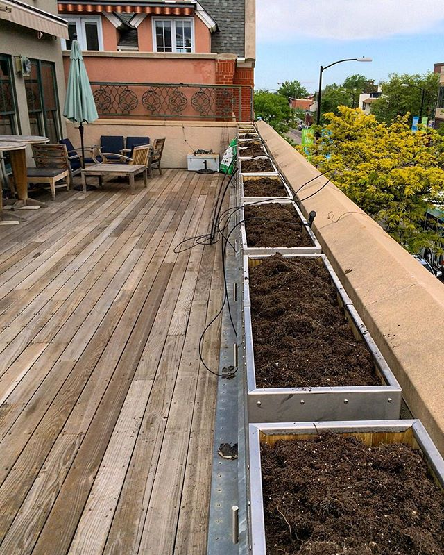 Roof deck revitalized. New planter boxes with a view ☀️