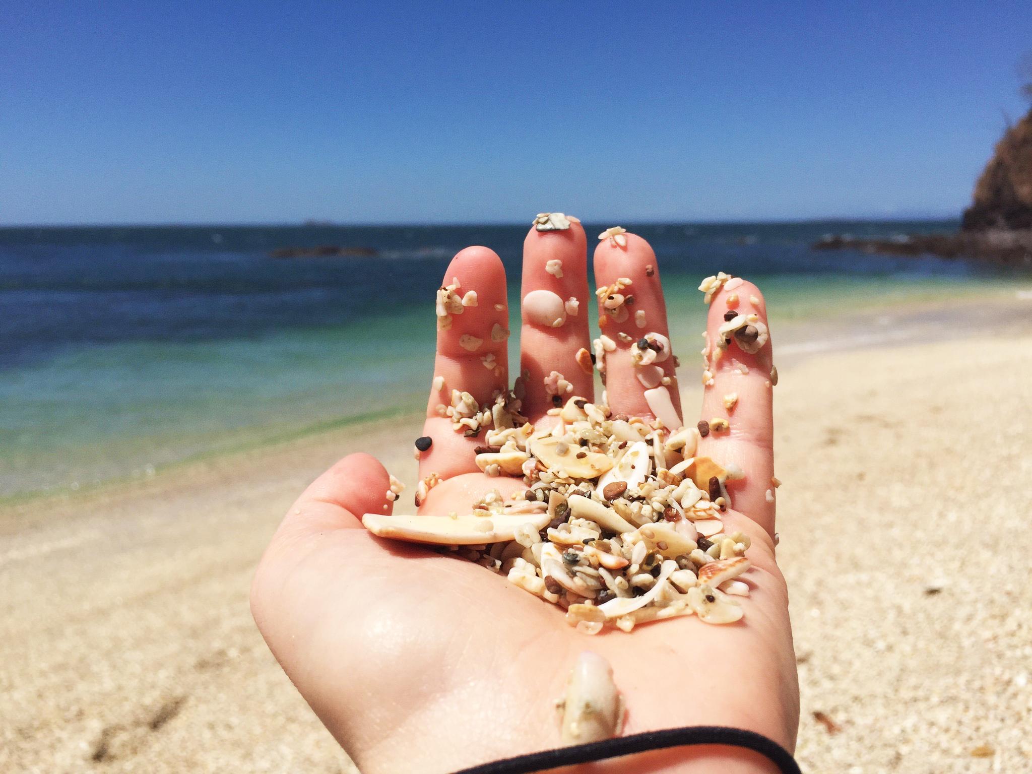 Tiny crushed shells