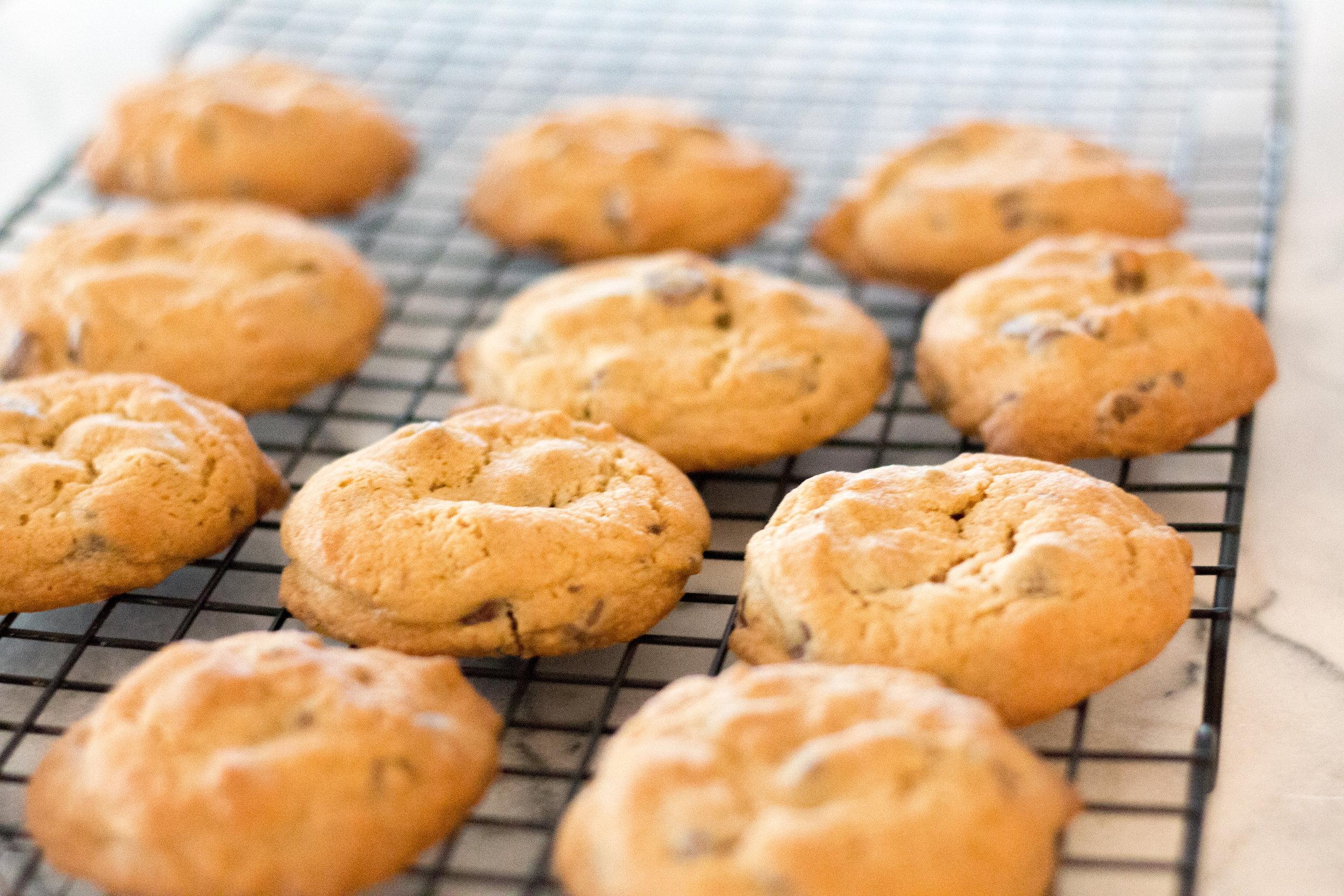 chocolate chip cookie-4.jpg