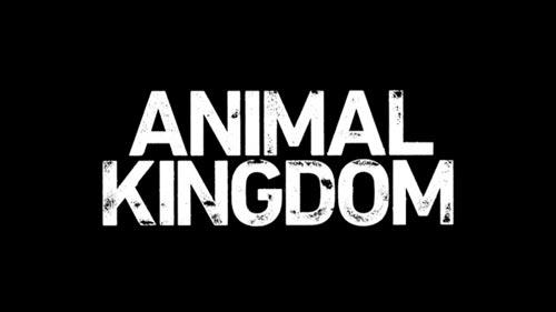 animal-kingdom-logo.jpg