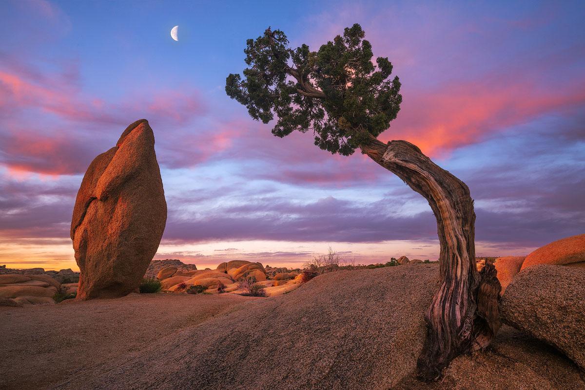 Head-and-Heart-sunset-desert-moon