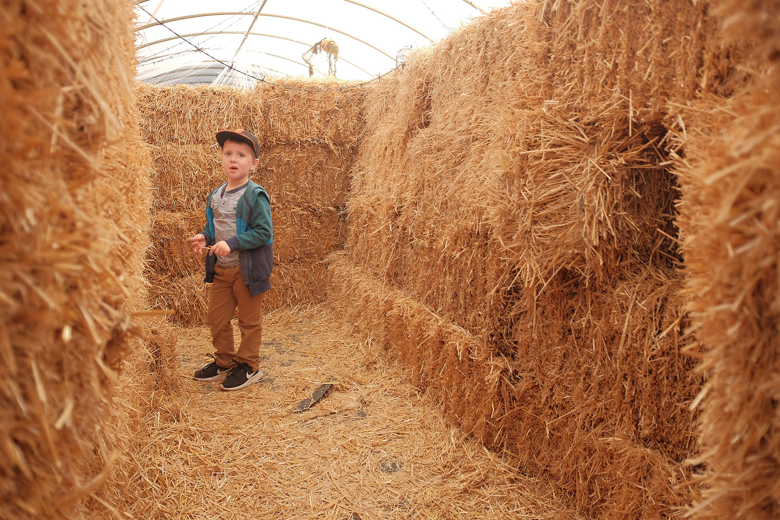 boy-standing-in-hay-maze-rule-of-thirds