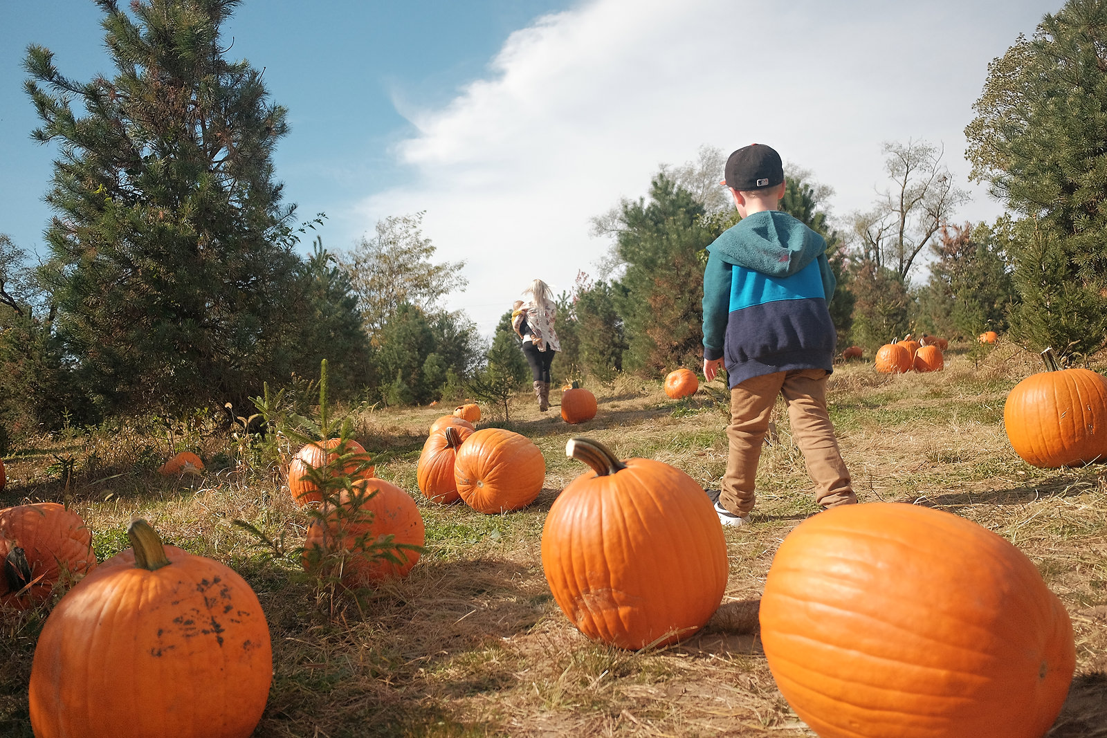 walking-through-pumpkin-patch