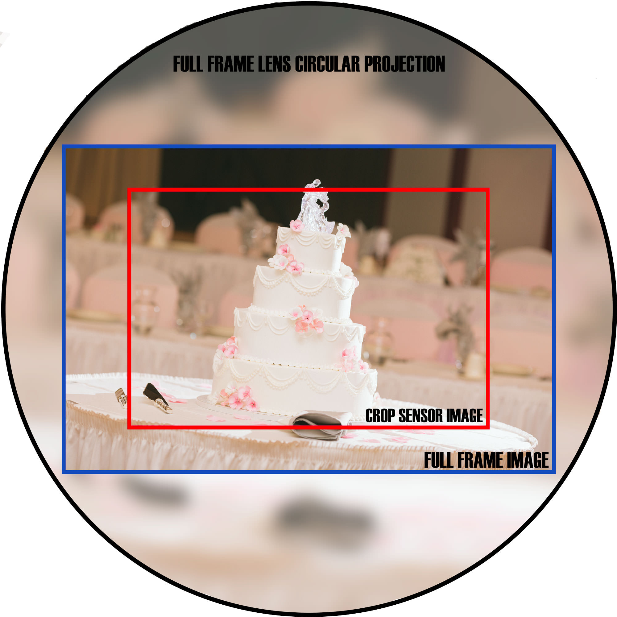 photography-crop-factor-image-circle