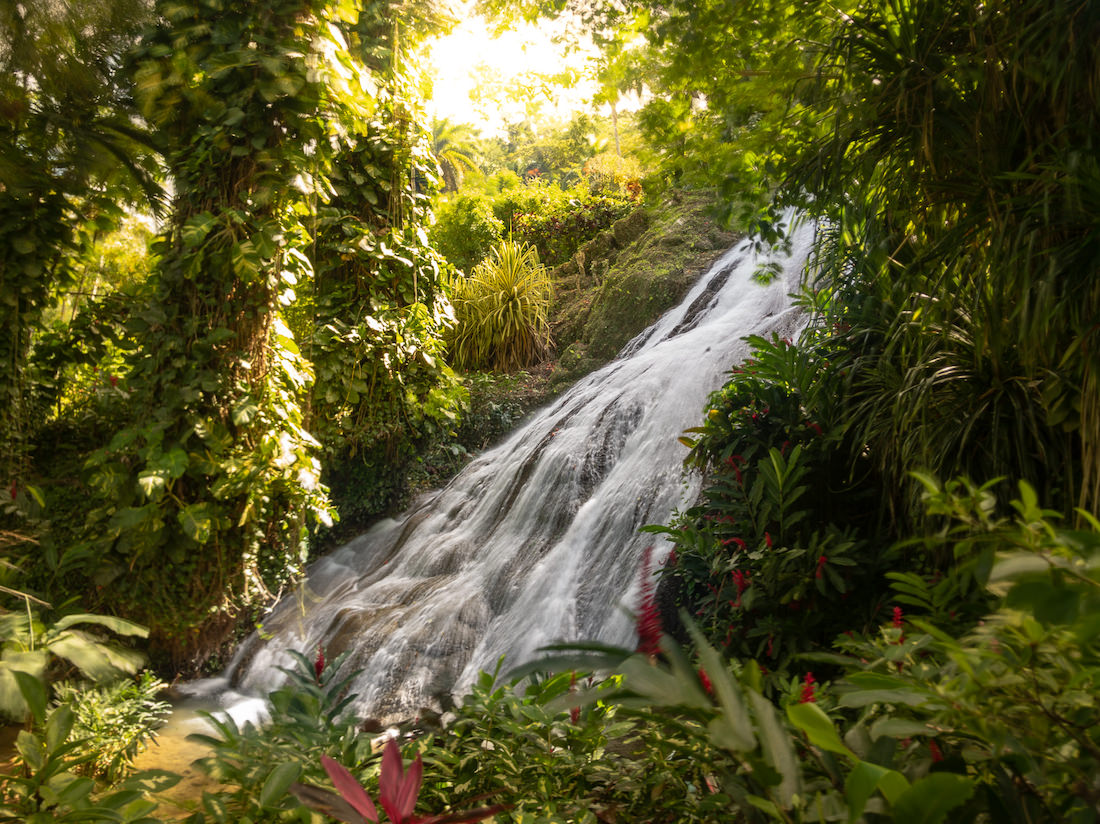 waterfall though green brush cover