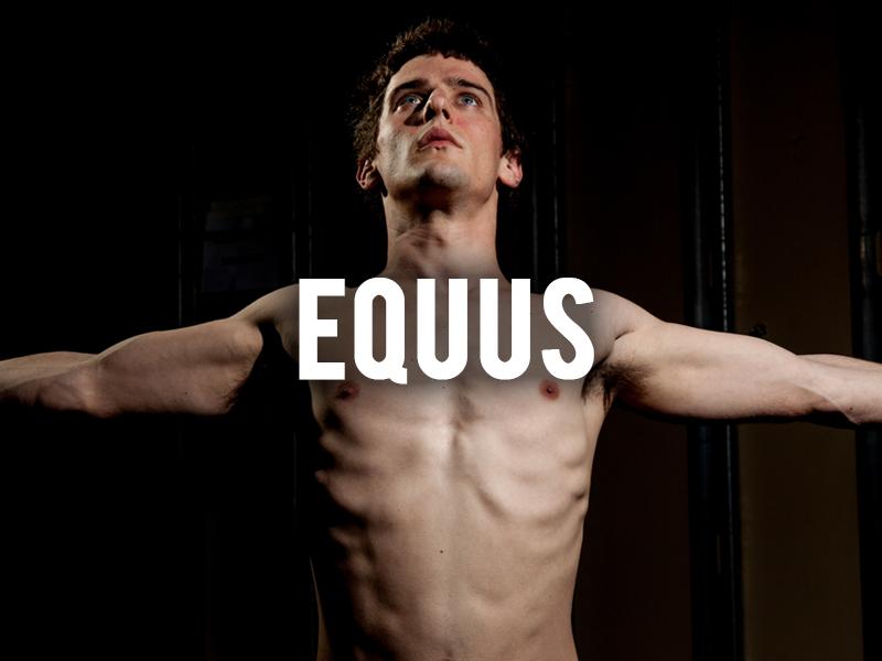 equus_thumb.png