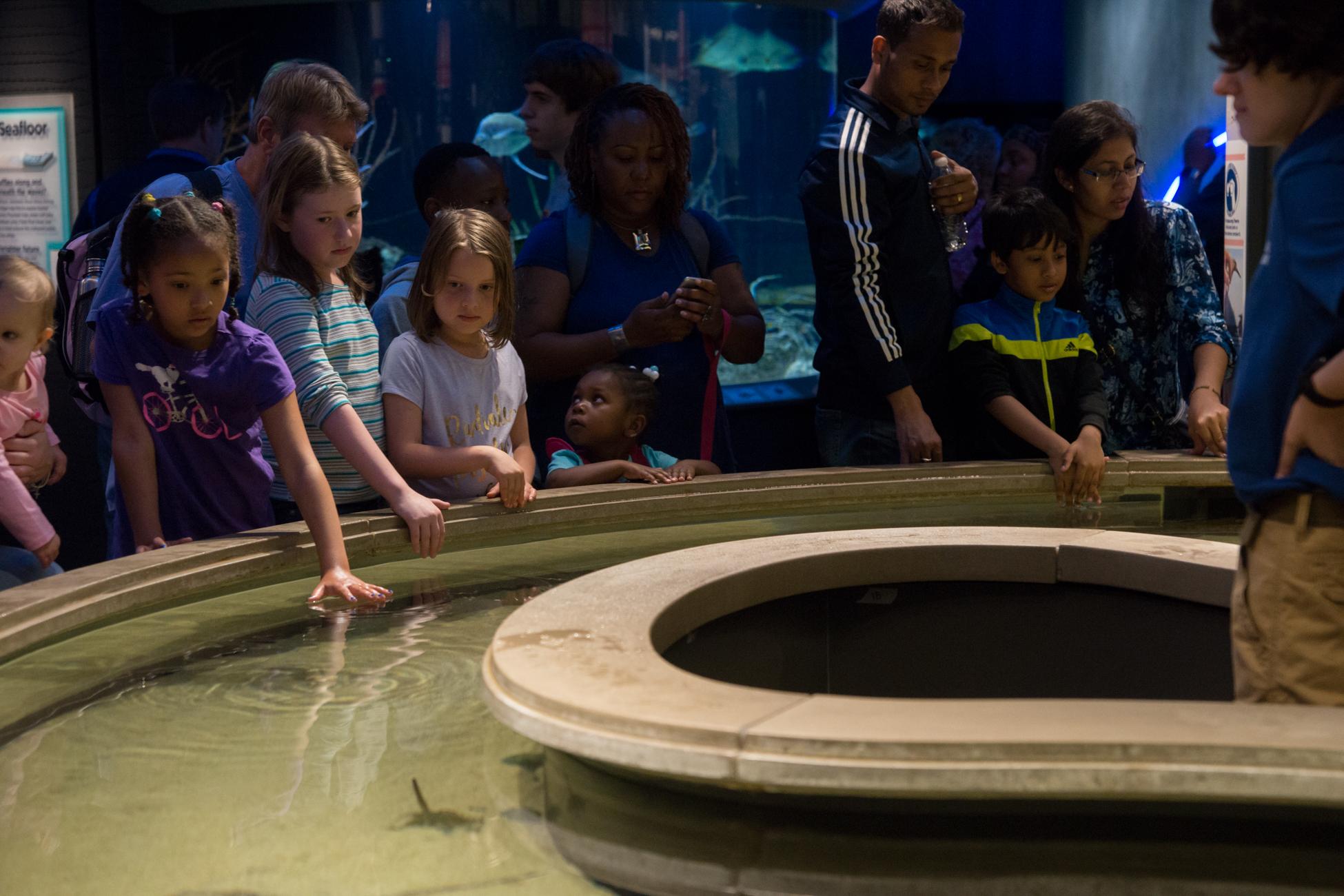 Baltimore Inner Harbor and National Aquarium (c) My3GirlsPhotography May 2017-21.jpg