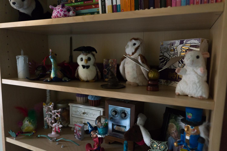 Alanna's Bedroom Makeover 12.29.17-3.jpg