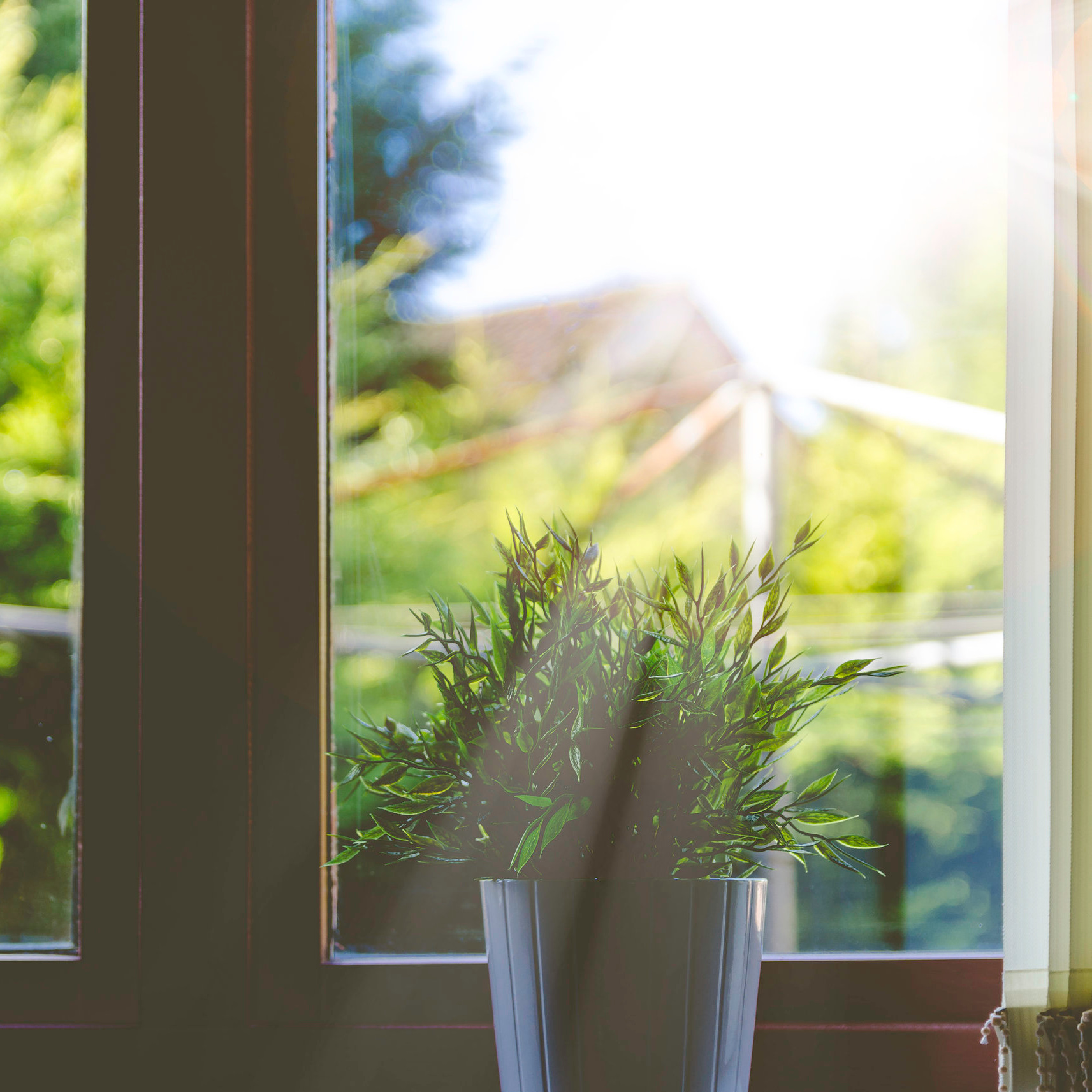 Renue Your Windows With Clear Units