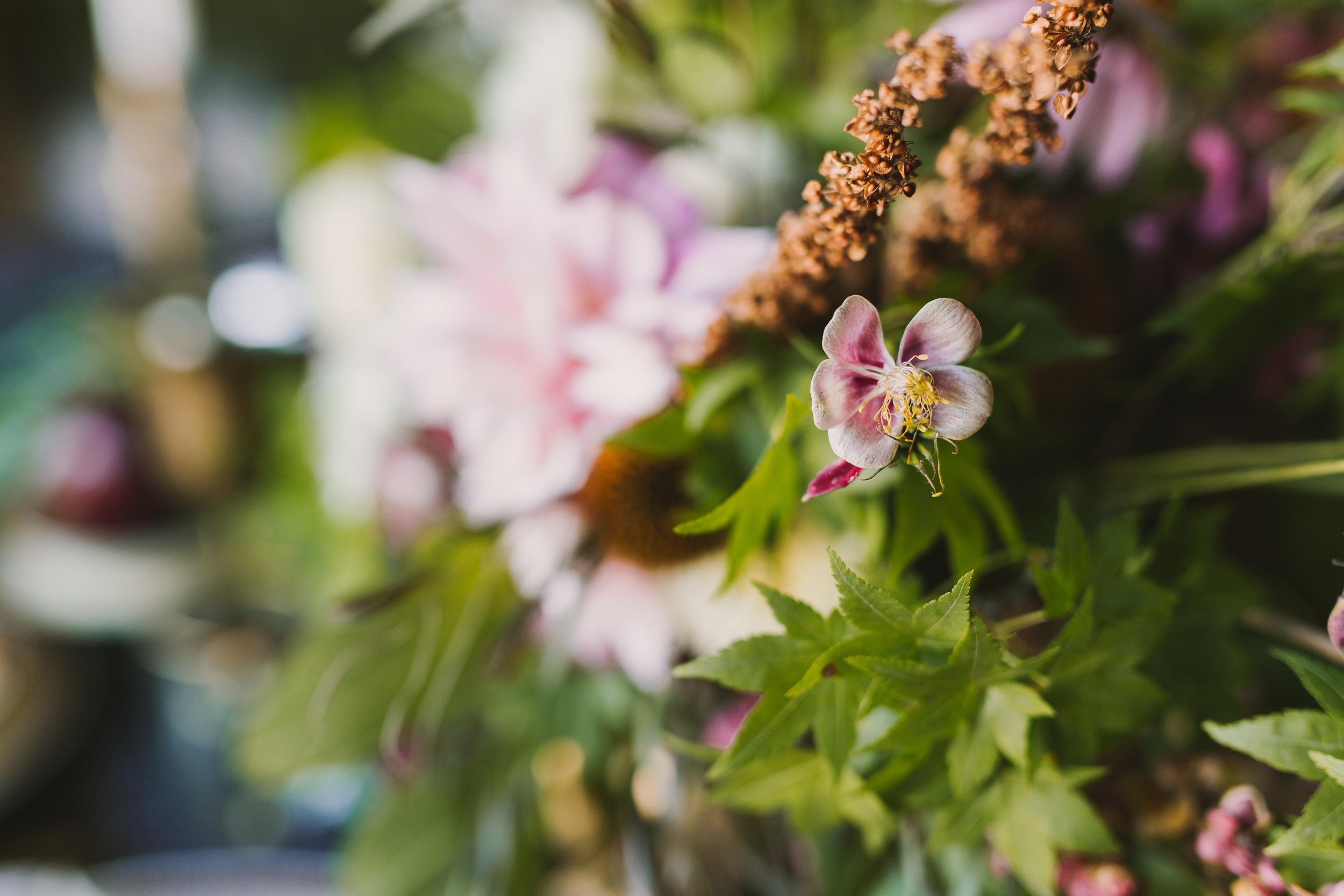 JBphoto_Monterey-41.jpg