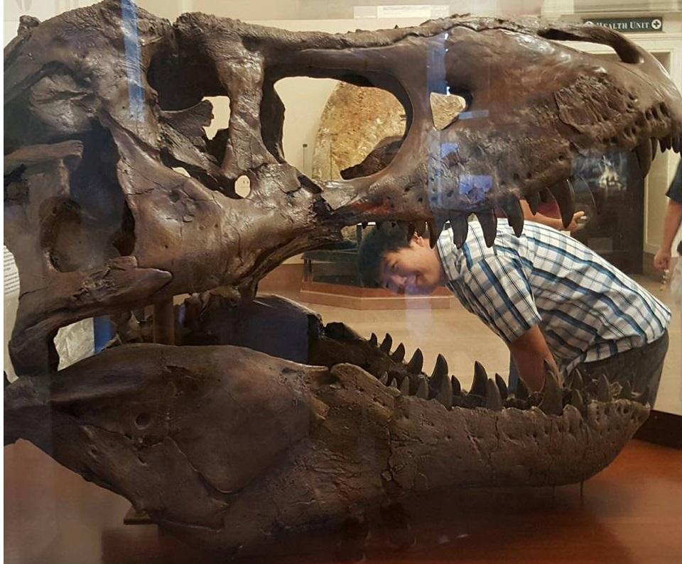 If T-Rex were a big fish at the Smithsonian (Washington D.C.)