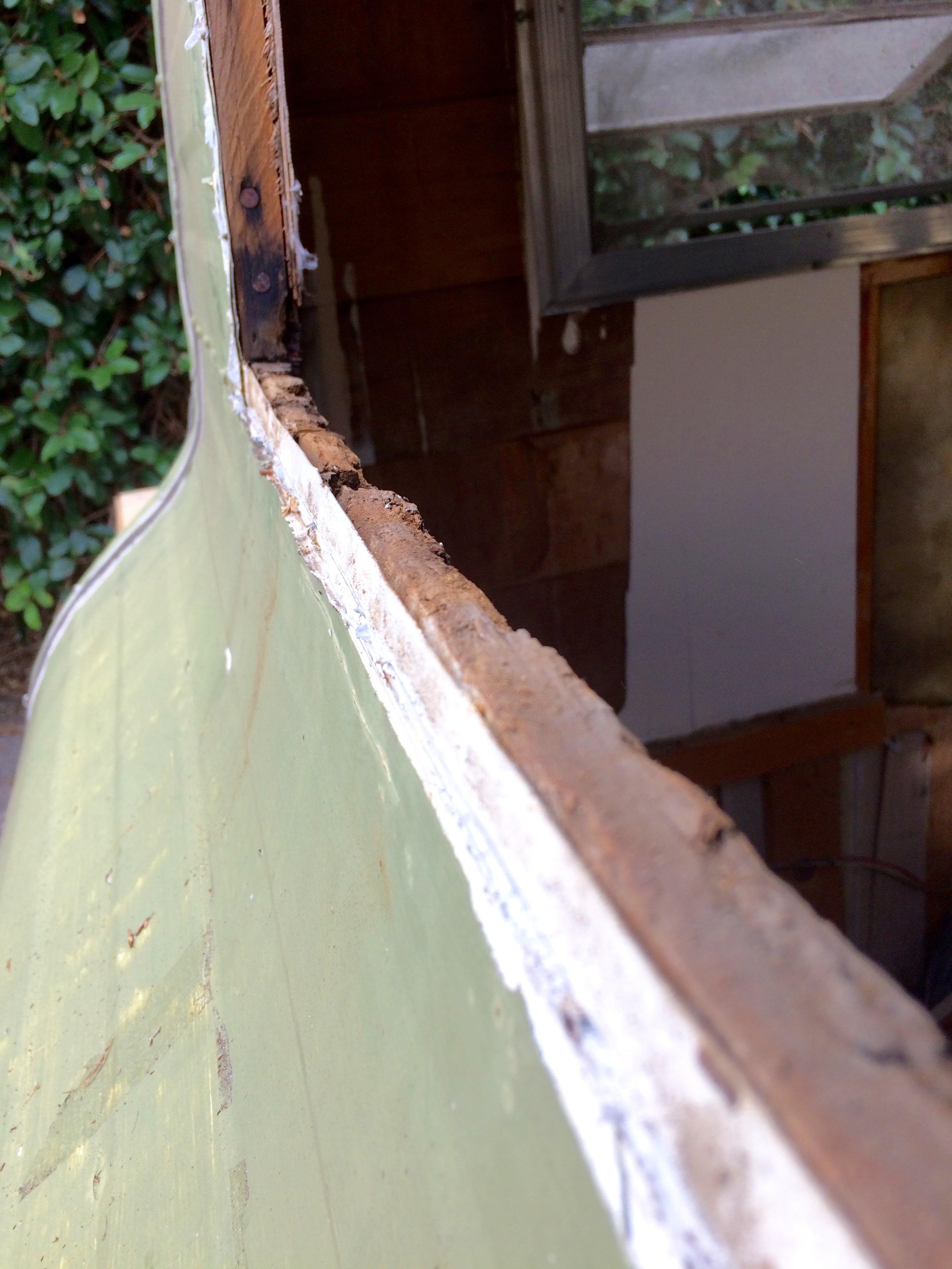 water damage around the window framing