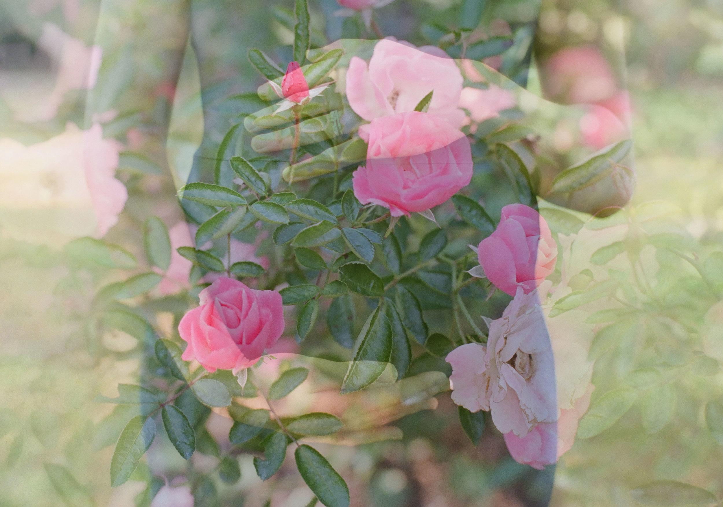 sauphia-germain-photo-double-exposure.jpg