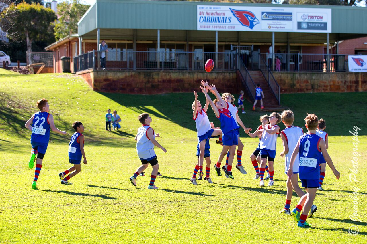 Here are some action shots of the Mt Hawthorn Cardinals in their recent derby between their two Under 12 teams. The Reds won by a narrow margin.