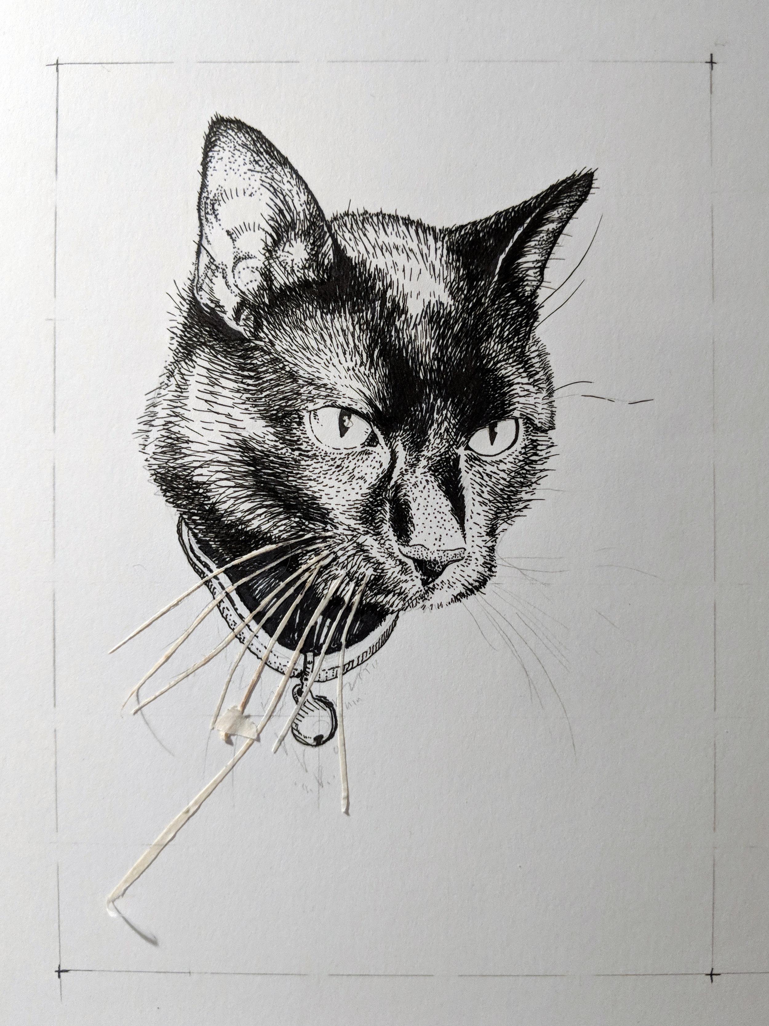 Memorial Pet Portrait (inks)