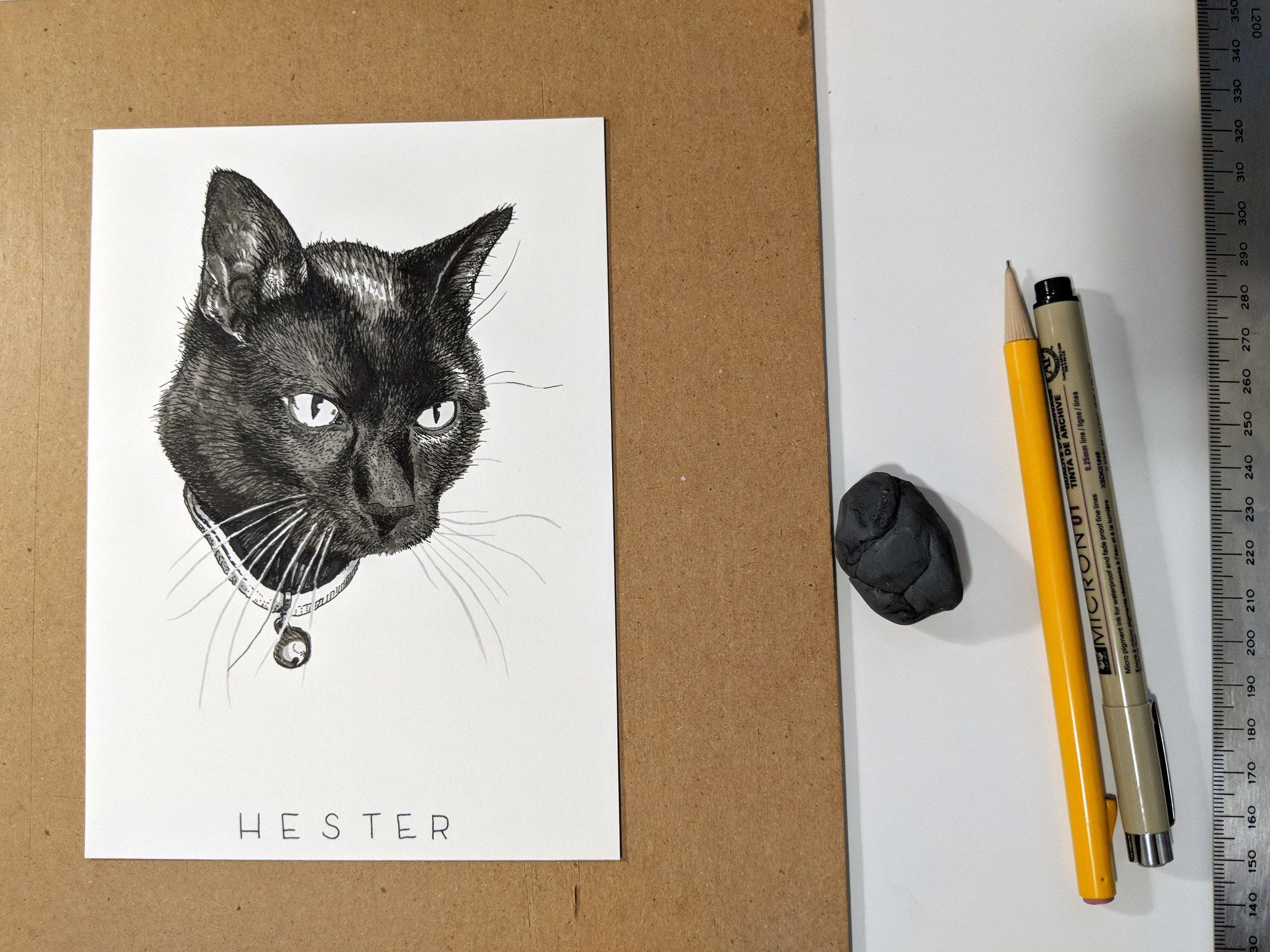 Memorial Pet Portrait (process)