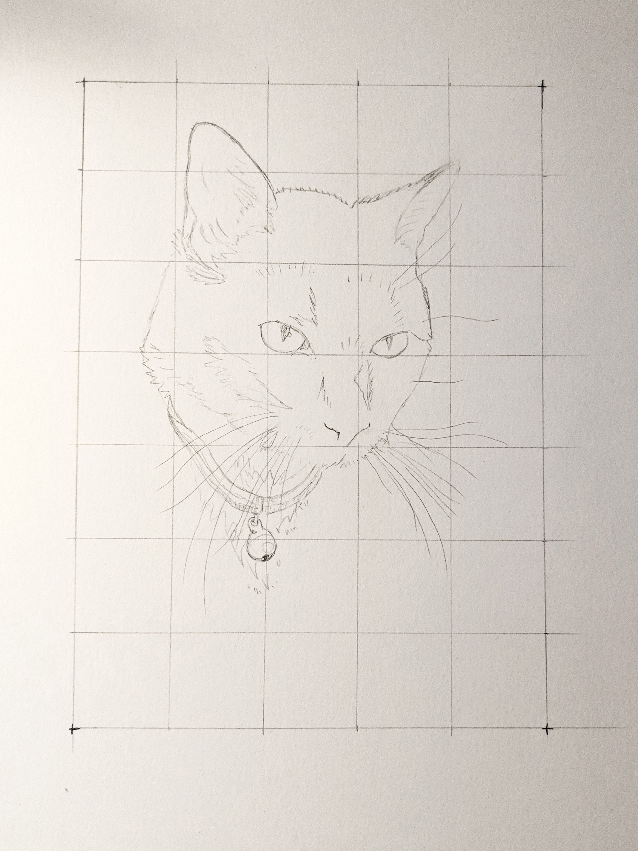 Memorial Pet Portrait (pencils)