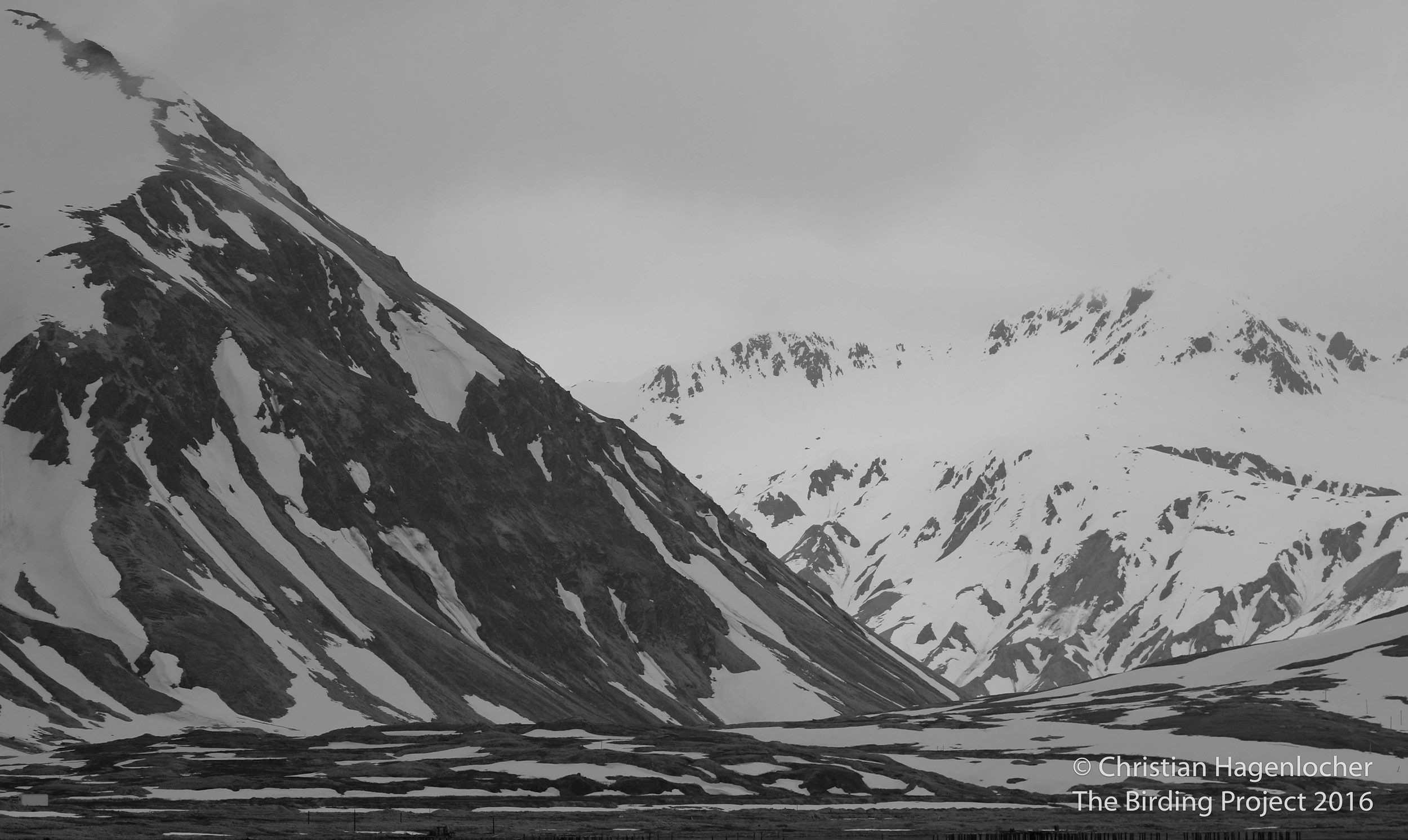 Snow-covered peaks rise from the sea, disappearing into the cloudy sky