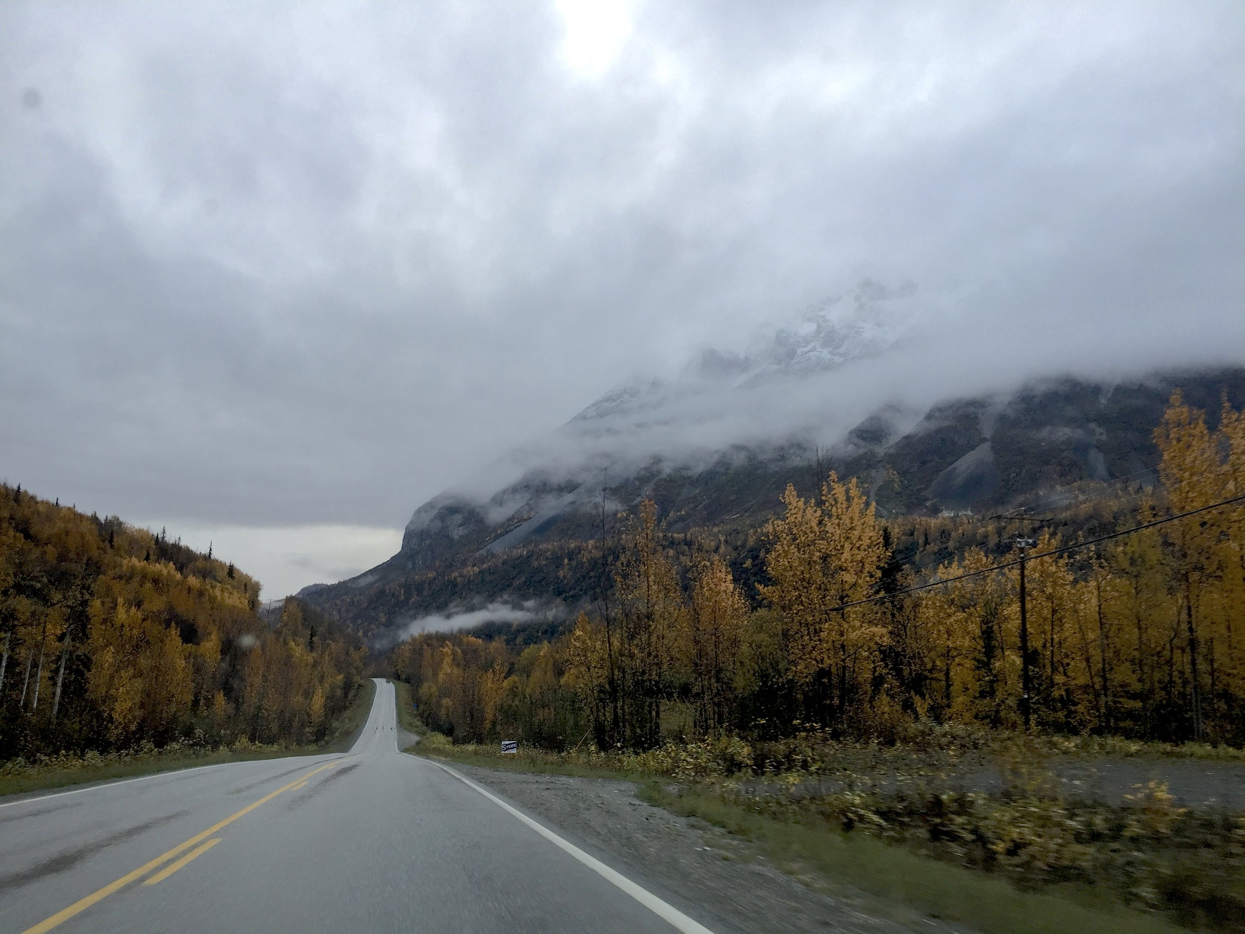 Even a quick iPhone shot captures the beautiful fall colors of Aspen and Poplar trees along the Glenn Highway