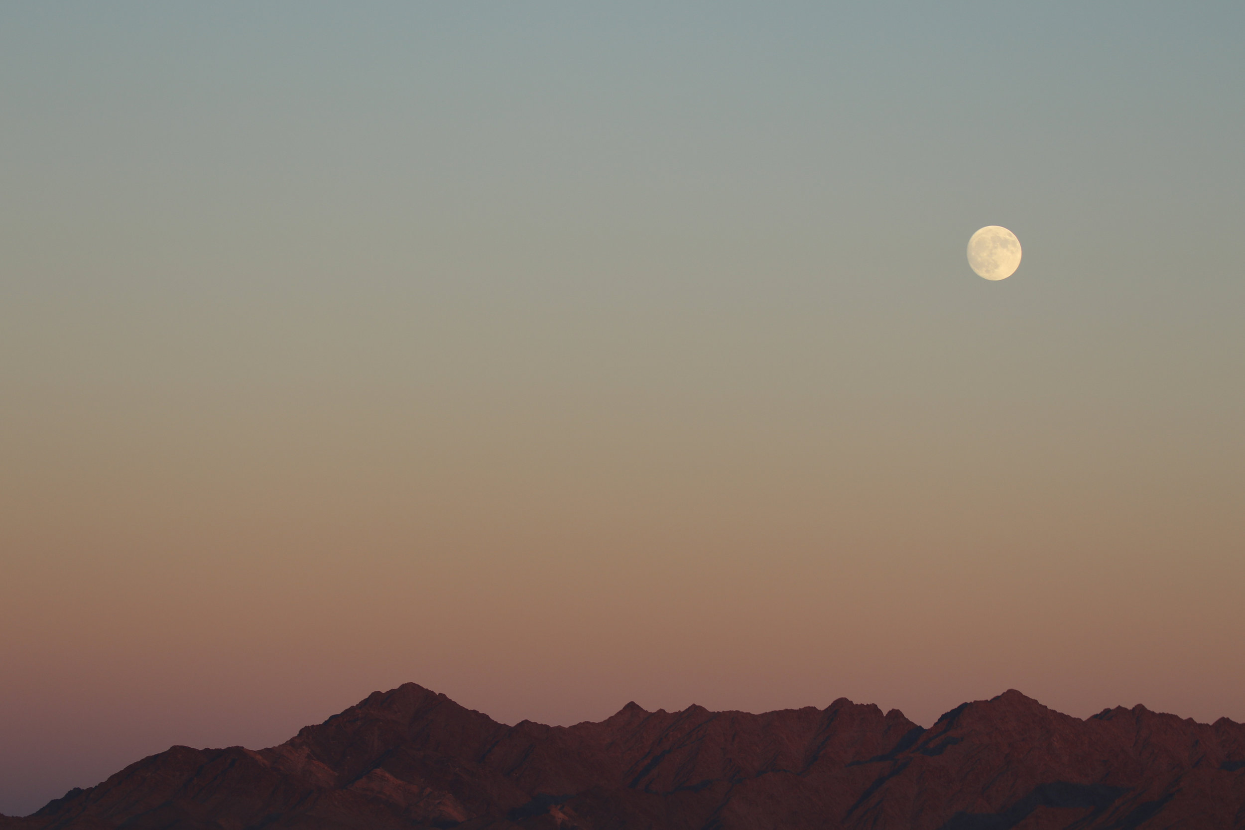 I enjoyed the sunset and moonrise on the Navajo Nation while searching for the Sand Plover