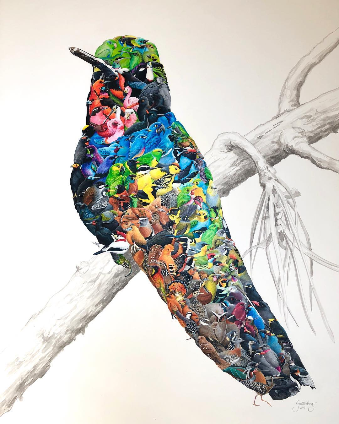 """An incredible piece of art"" - A rising bird artist creates amazing composite bird drawings, from dozens of species of birds"