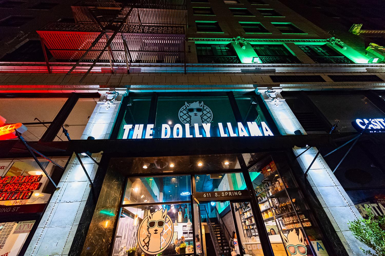DiscoverDTLA   Gianina Ferreyra   Dolly Llama