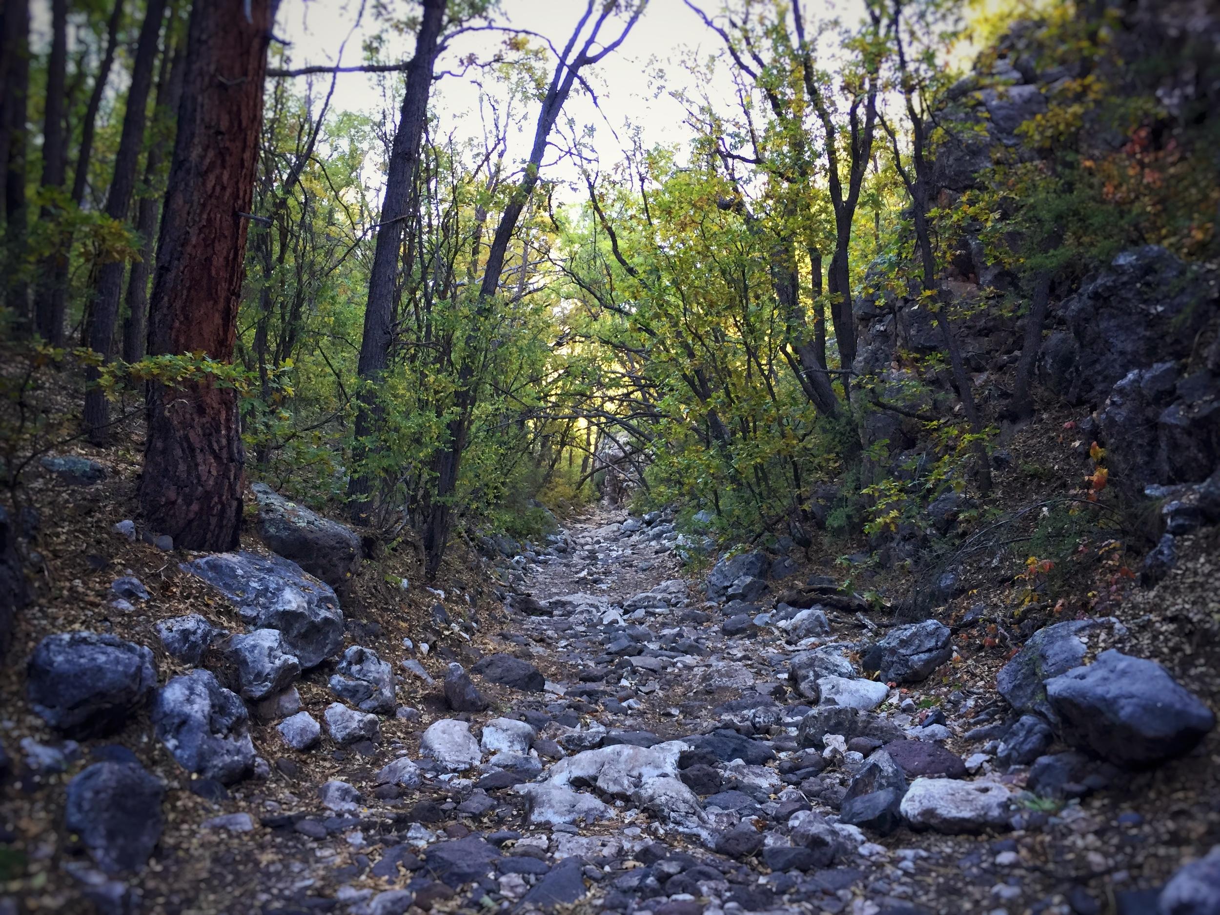 Smiley Rock Trail Martin Canyon