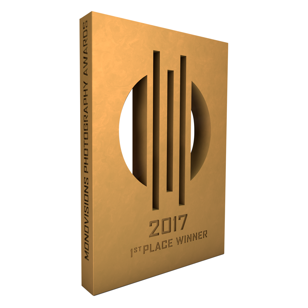 monovisions_awards_2017_1st_place.png