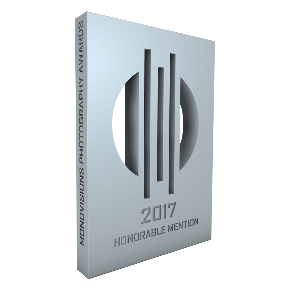 monovisions_awards_2017_hm.png