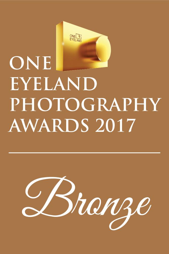 Bronze-OneEyelandPhotographyAwards_2017.jpg