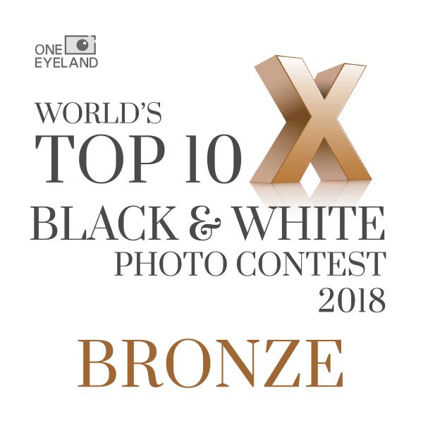 2018 -bronze-OneEyeland B:W.jpg
