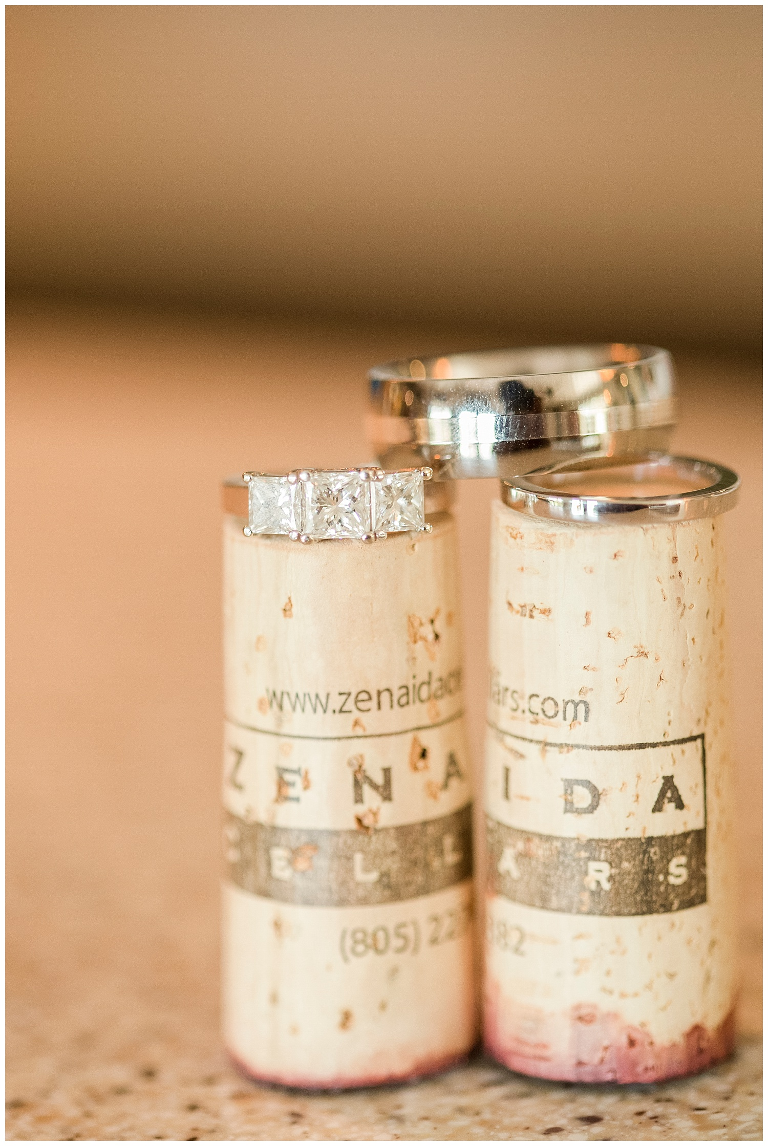 Jill+Bret | Paso Robles winery elopement | Renoda Campbell Photography_12.jpg