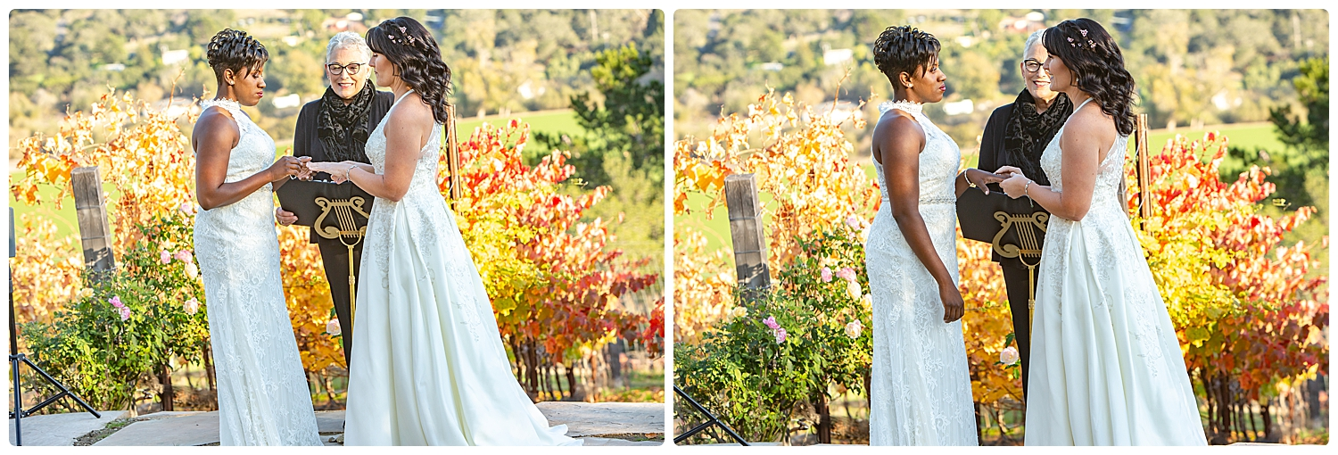 New Years Eve intimate wedding_Renoda Campbell Photography_LGBT wedding_0072.jpg