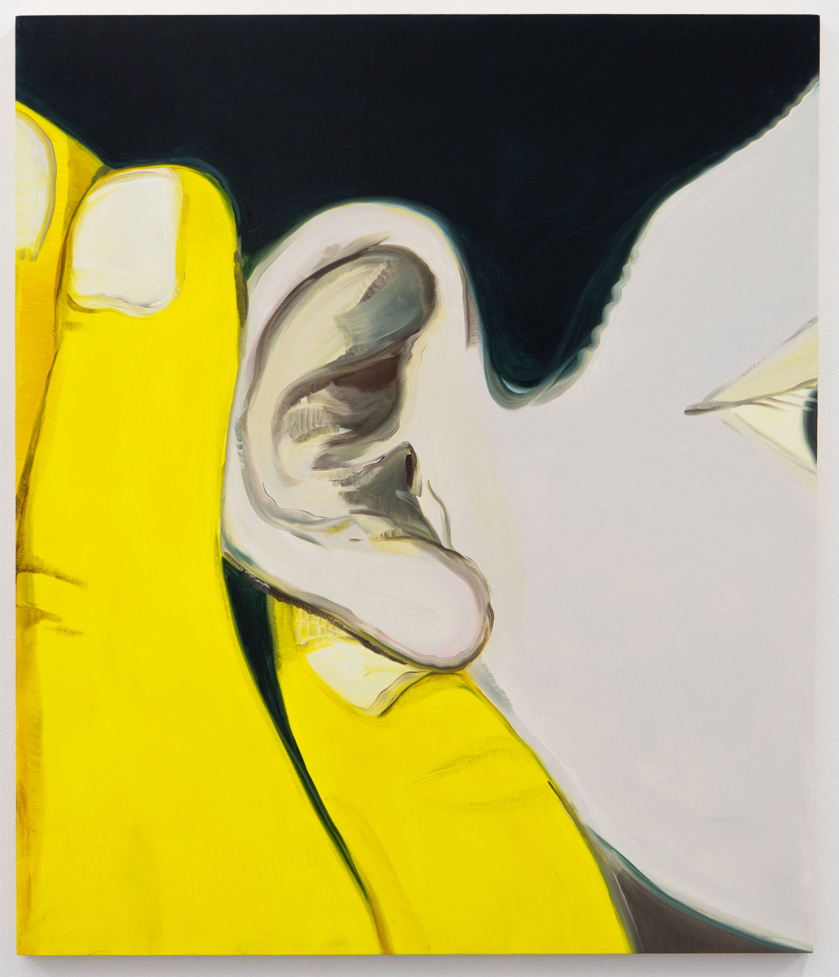 Anahiras Ear, 60x70cm, oil on board, 2017