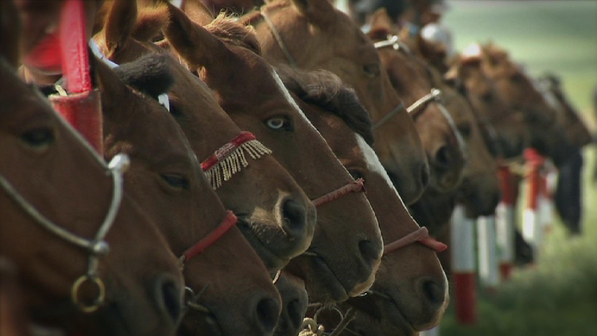 Mongolians Celebrate Muscular Past