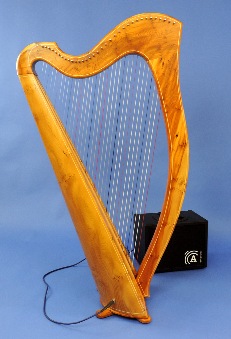 Electro-Acoustic Yew wood on Carbon Core