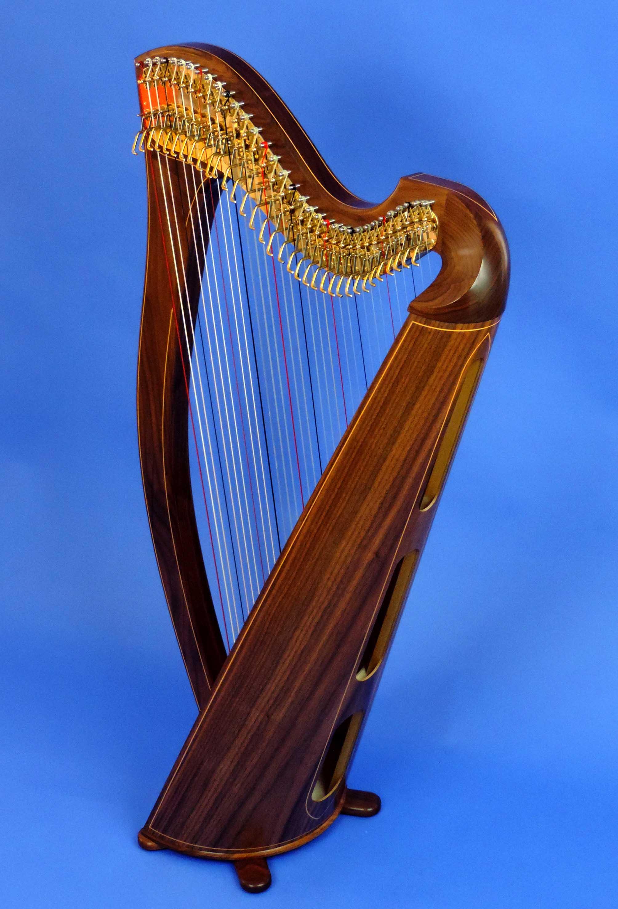 AA Jenny Harp 004.jpg