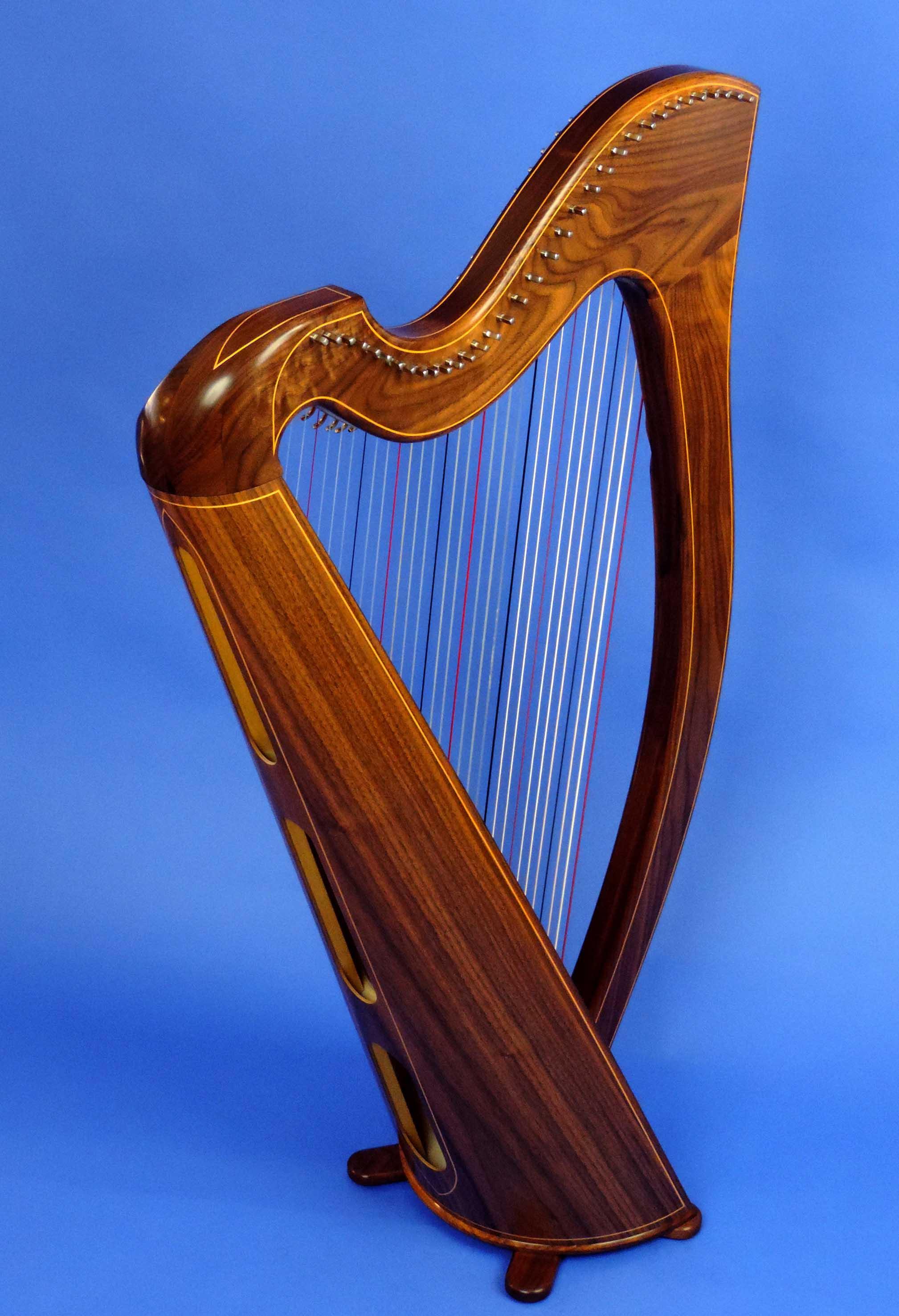 AA Jenny Harp 005.jpg