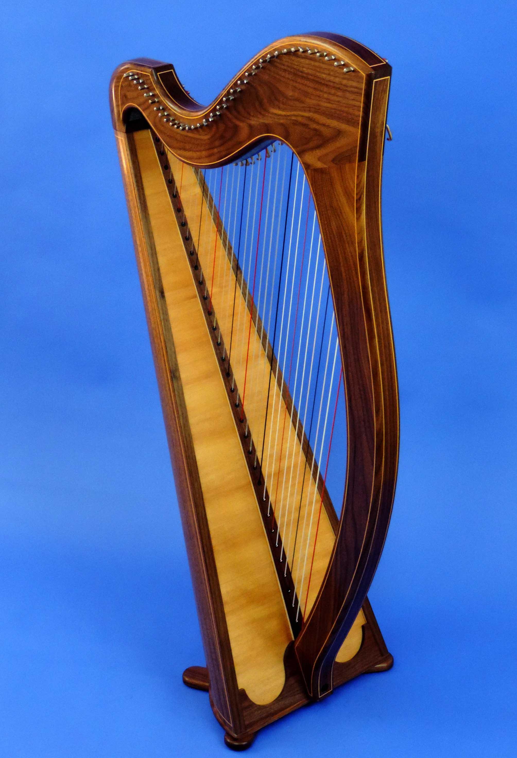 AA Jenny Harp 008.jpg