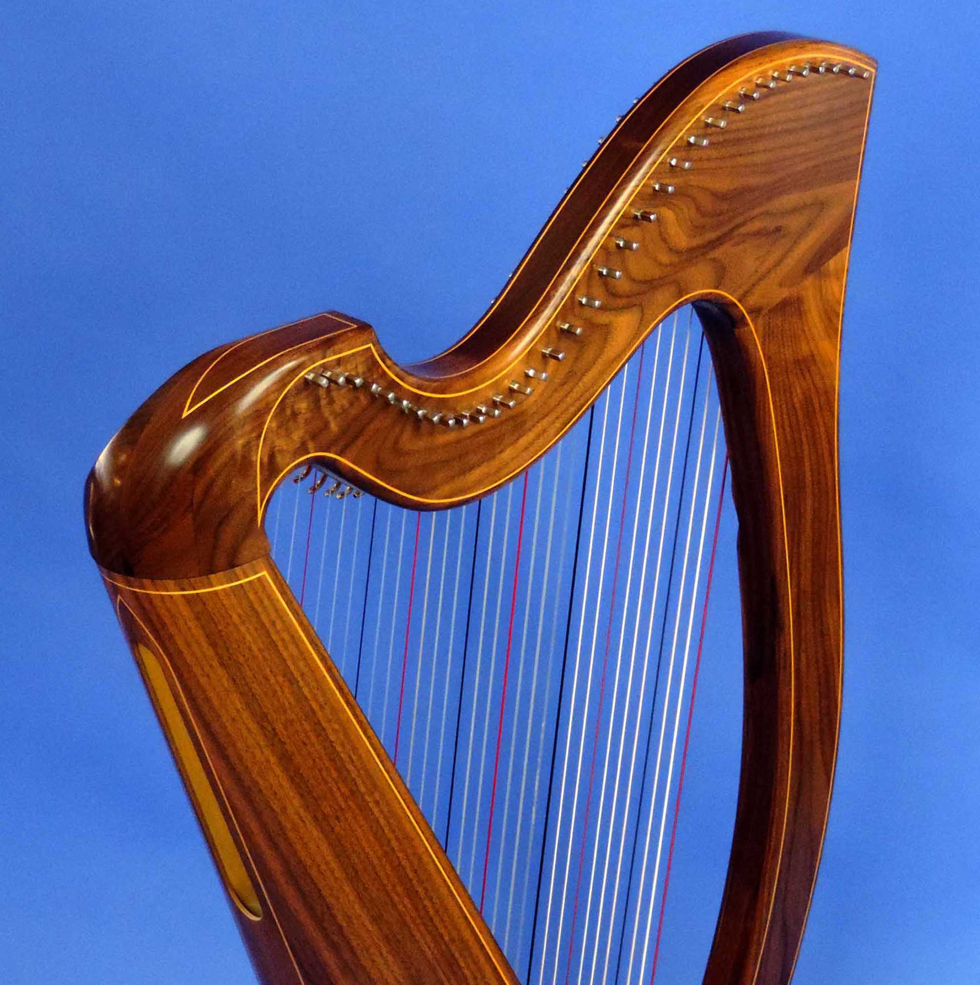 AA Jenny Harp 005 Square.jpg