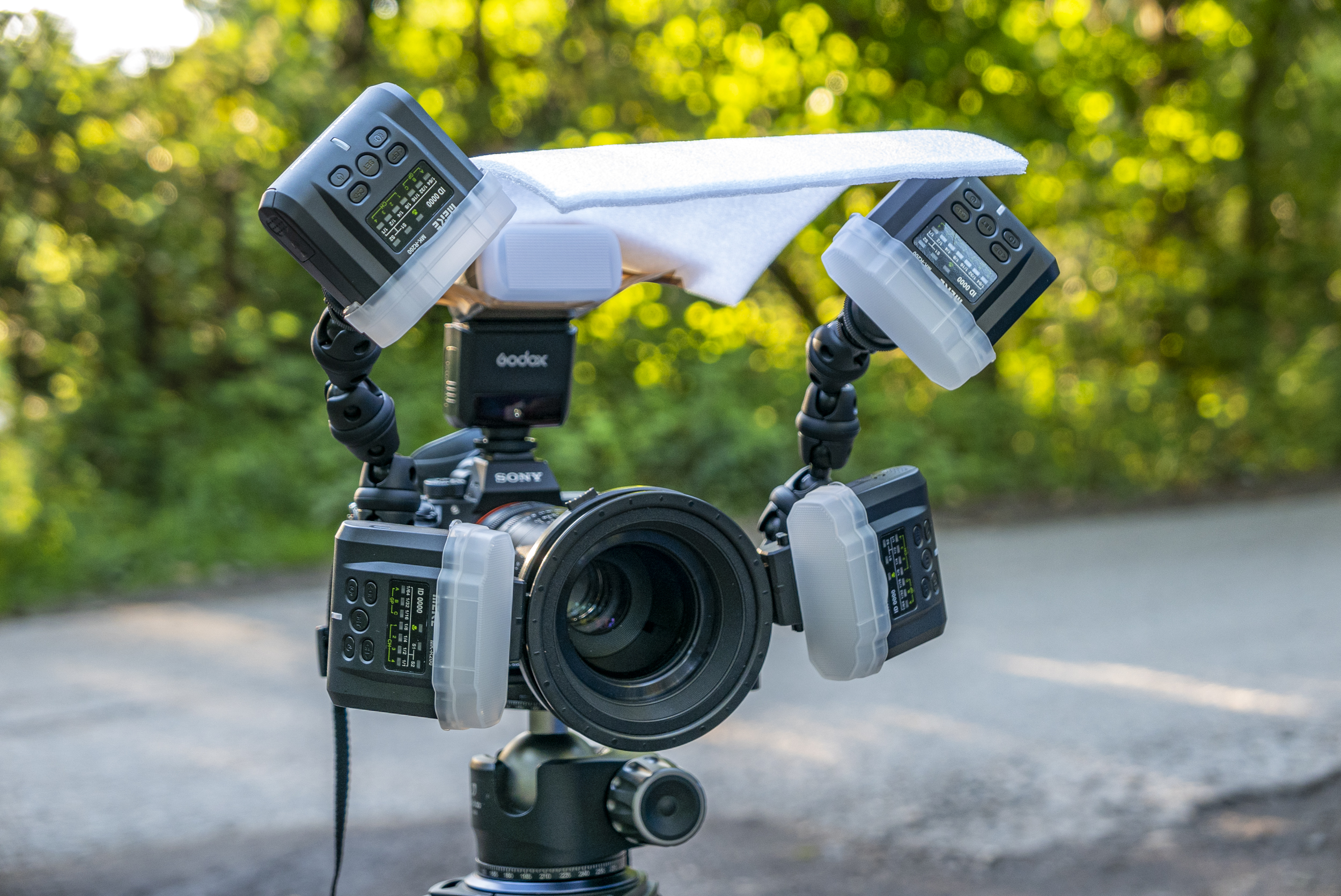 For all the true macro shots or really close ups, this is the lighting setup I used.